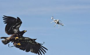 Rogue Drones: Counter-UAS systems take down outlaw aircraft