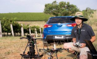 Drone Turns Scarecrow in Vineyard
